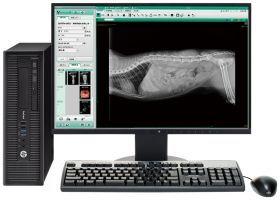 一般X線撮影